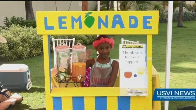 Amayah's Lemonade Stand, a Sweet Success